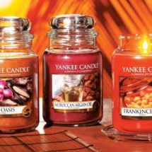 Yankee Candle Tarts Probe Sortiment