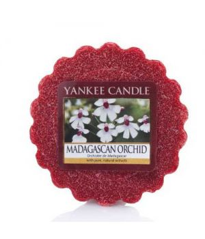 Yankee Candle Madagascan Orchid Tart Wachs
