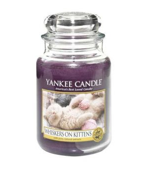Yankee Candle Whiskers on Kittens limitiert