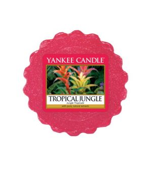 Yankee Candle Tropical Jungle Tars Wax Melt
