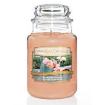 Yankee Candle Market Blossom limited